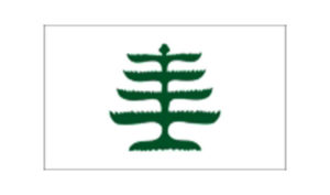 United States Historical Flag Pine Tree