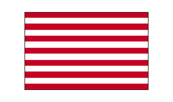 United States Historical Sons of Liberty Flag