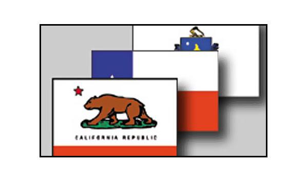 50 State Flag Sets