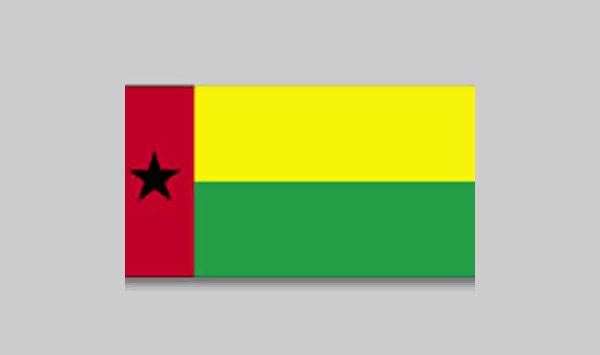 Guineabi Flag