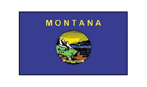 Montana Flags