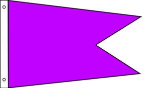 Nylon Solid Color Angle Burgees
