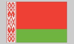 Flag of Belarus (Nylon)