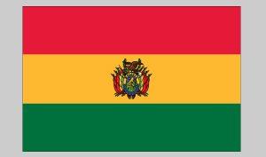 Flag of Bolivia (Nylon)