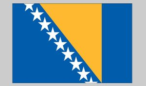 Flag of Bosnia-Herzegovina (Nylon)