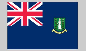 Flag of British Virgin Islands (Nylon)