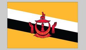 Flag of Brunei (Nylon)