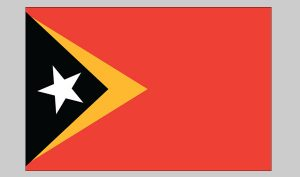 Flag of East Timor (Nylon)