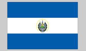 Flag of El Salvador (Seal) (Nylon)