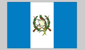 Flag of Guatemala (Nylon)