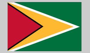 Flag of Guyana (Nylon)