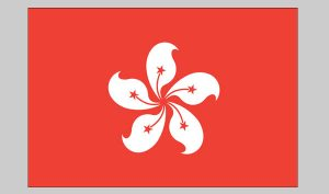 Flag of Hong Kong (Nylon)