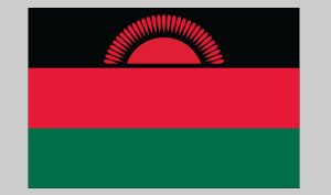 Flag of Malawi (Nylon)