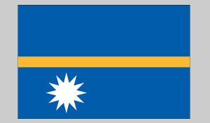 Flag of Nauru (Nylon)