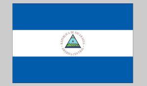 Flag of Nicaragua (seal) (Nylon)