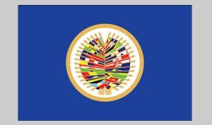 Flag of OAS (Nylon)