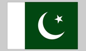Flag of Pakistan (Nylon)
