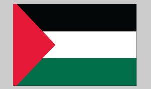 Flag of Palestine (Nylon)