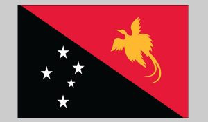 Flag of Papua New Guinea (Nylon)