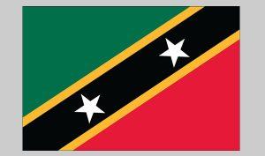 Flag of St. Chris-nevis (Nylon)
