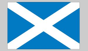 Flag of Scotland (cross) (Nylon)