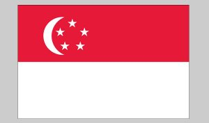 Flag of Singapore (Nylon)
