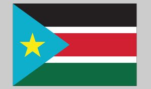 Flag of South Sudan (Nylon)