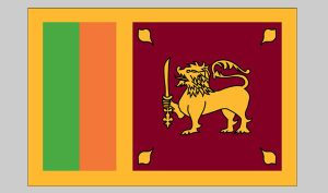 Flag of Sri Lanka (Nylon)