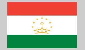 Flag of Tajikistan (Nylon)