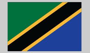 Flag of Tanzania (Nylon)