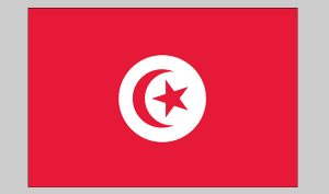 Flag of Tunisia (Nylon)