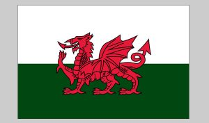 Flag of Wales (Nylon)