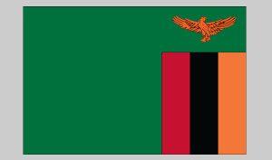 Flag of Zambia (Nylon)